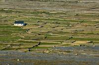 Lonely House on Inishmore
