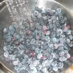 """""""Blueberry Shower"""" by LatigoLiz"""