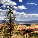 """Bryce Canyon 05"" by Cynthia_Burkhardt"