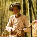 """bamboo grove."" by SabineSteinmueller"