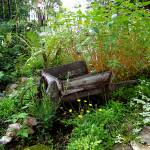 """Old Wheelbarrow"" by chelsearossi420"