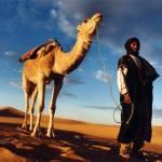 """""""Sahara Sunrise"""" by Photoclassics"""