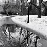 """Central Park Snowscape"" by Photoclassics"