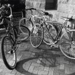 """Bicycles"" by Photoclassics"