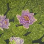 """Fine Art Prints Water Lilies Wall Art Lily Lotus"" by BasleeTroutman"