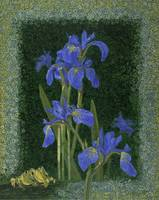 Fine Art Prints Irises Flowers Iris Wall Art Frogs