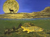 Fine Art Prints Brown Trout Fish Art Elk Art Moon