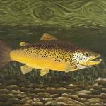 """Fine Art Prints Brown Trout Lake Fishing Nature"" by BasleeTroutman"