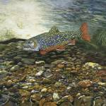 """Trout Fine Art Print Brook Trout Fish Nature Art"" by BasleeTroutman"