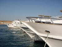 Sharm Trafco Jetty