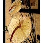 """""""Anthurium Repose"""" by LinguaFlora"""
