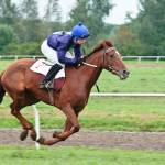 """Racing horse"" by tobinejumi"