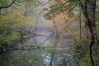 Foggy-Creek
