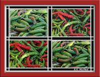Green Peppers mozaic
