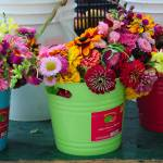 """Farm Market Flowers 8109"" by photohogdesigns"
