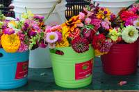 Farm Market Flowers 8109