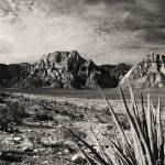 """Red Rock in Sepia"" by PadgettGallery"