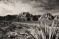 Red Rock in Sepia