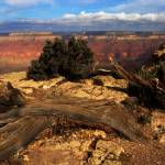 """Grand Canyon Vista No. 9"" by PadgettGallery"