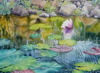 Waterlilies Collection  II-08