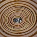 """kelp spiral"" by KurtThorson"