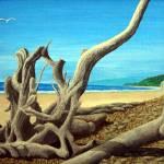 """Driftwood"" by FredericKohli"