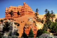 Red Canyon orton 02