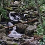 """""""mountain stream"""" by ddamredhead"""