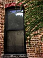 Brick & Ivy Window...