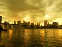 MANHATTAN GOLD ( BROOKLYN BRIDGE)
