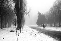 Winter noir