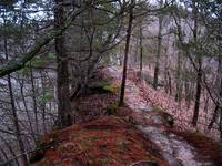 Bluff-top Trail