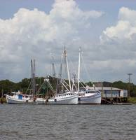 Bohicket Shrimpers