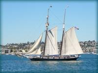 Clipper ship San Diego Harbor by Heather Lynn