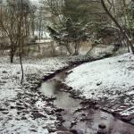 """""""A Winters Tale"""" by wilkyphoto"""