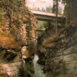 """Athabasca Falls, Alberta"" by 2goldmom"