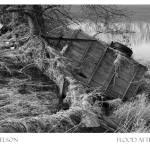 """""""Flood Aftermath"""" by carlnelson"""