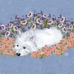 """Westie Resting"" by MaggieRossArt"