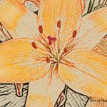 """Pencil Lily"" by Bonniemarie"