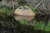 Lake placid reflections - quiet rock