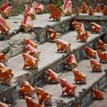 """Conch Shells - Nassau Bahamas 1983"" by kevinbrown"