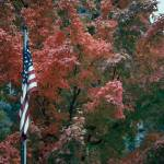 """Fall color flag"" by photosbytravis"