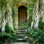 """The Way into the Wood"" by AngelaBarnett"
