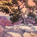 """Tree on North Rim"" by RICKKERSTEN"