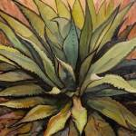 """Agave Warm"" by RICKKERSTEN"