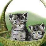 """Kitty Caddy"" by bubbas"