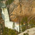 """Yellowston Canyon Lower Falls"" by count"