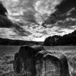 """Imagekind"" by Stickley"