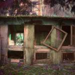 """""""abandoned chicken coop"""" by DeeprBlue"""