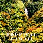 """Hawaii poster"" by rayjacque"